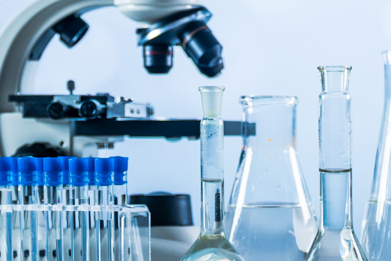 The importance of high bioavailability